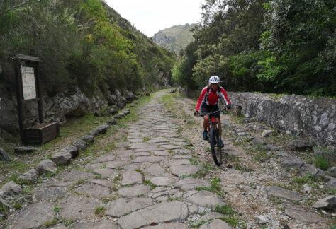 Appia Antica In Bike