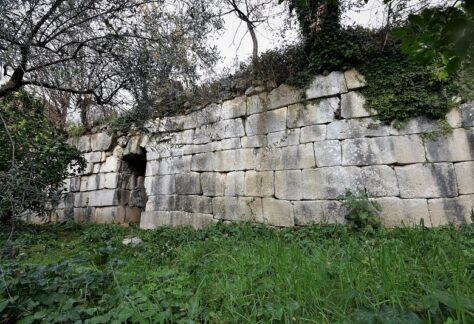 Porta-Aurea-3